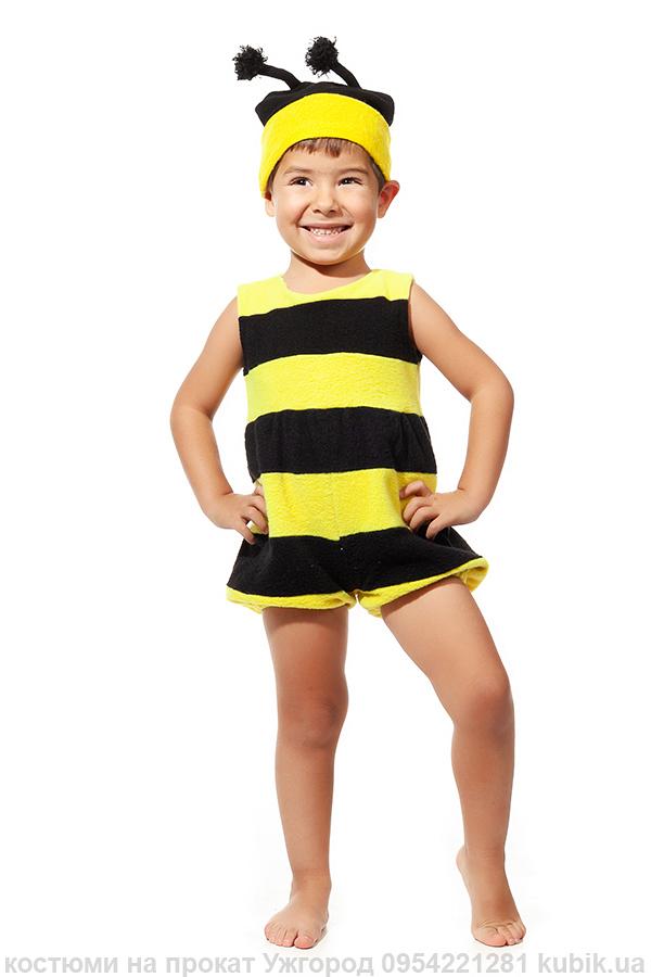костюм джмелика, бджілки на прокат в Ужгороді